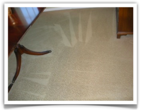Carpet Cleaning Minneapolis, MN