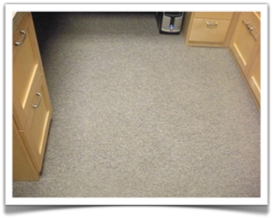 Commercial Carpet Cleaning in Bloomington, MN
