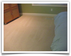 Carpet Cleaning Minnetonka, MN