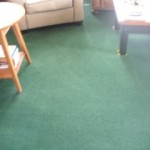 Carpet Cleaning Minnetonka, MN Family Room