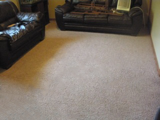 Carpet Cleaning Woodbury, MN