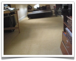 Carpet Cleaning St. Paul, MN Chemfree