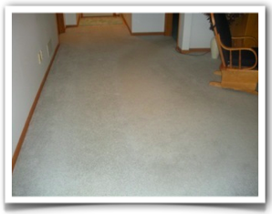 Chem Free Carpet Cleaning Project in Eden Prairie