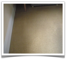 Commercial Carpet Cleaning in St. Paul