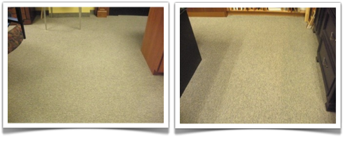 Office Carpet Cleaning St. Paul