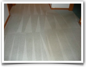 Carpet Cleaning Eden Prairie MN ChemFree