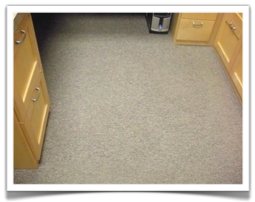 Commercial Carpet Cleaner Bloomington, MN 10/2012