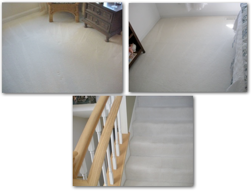 Cleaning Carpets in Chanhassen