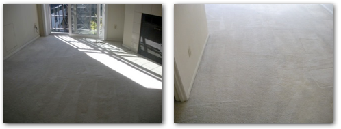 Residential Carpet Cleaning Minneapolis, MN