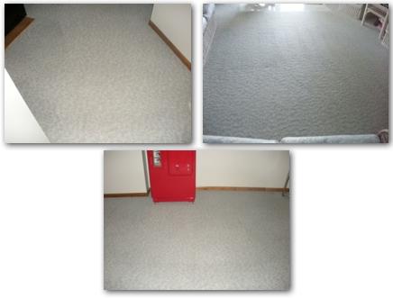 ChemFree Minnetonka Carpet Cleaning
