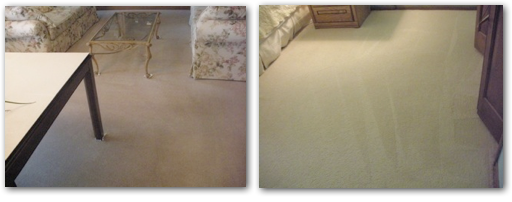 Carpet Cleaner St. Louis Park. ChemFree