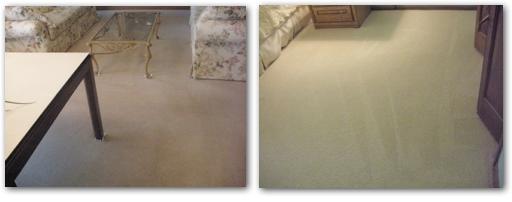 Carpet Cleaner St. Louis Park. ChemFree