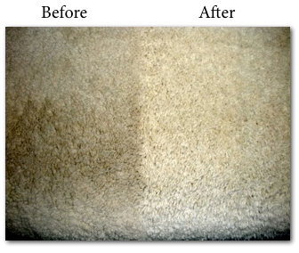 Cottage Grove Carpet Cleaning Project