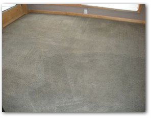 Excelsior Carpet Cleaning