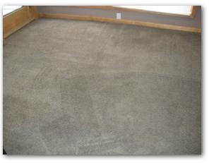 Excelsior Carpet Cleaning
