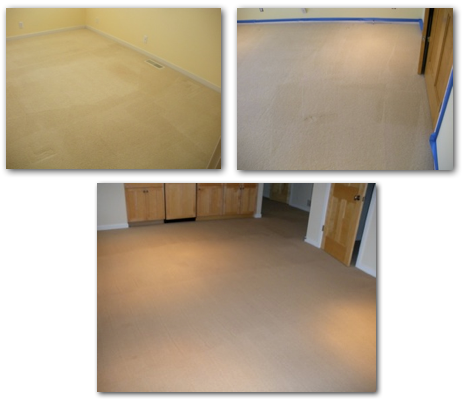 St. Paul, MN Carpet Cleaning Project
