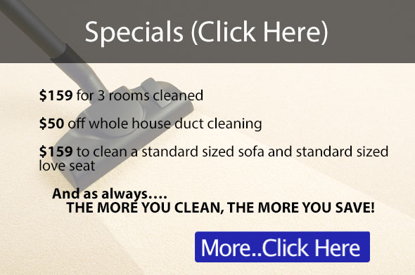 Top Rated Carpet Cleaning Panies In Mn Carpet Vidalondon